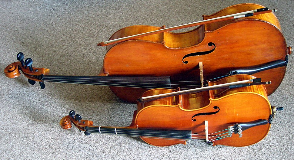 Full size and fractional cello