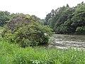 Futamiiwa hachirouiwa(二見岩 八郎岩) - panoramio (1).jpg