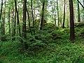 G. Miass, Chelyabinskaya oblast', Russia - panoramio (127).jpg