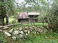 GOCTA-JUMBILLA - panoramio (1).jpg