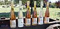 Gamme distillerie du bois des dames.jpg