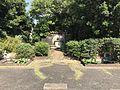 Garden in Hakozaki Campus, Kyushu University 20170615.jpg