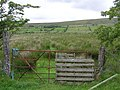 Gate at Carrickayne - geograph.org.uk - 477035.jpg