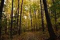 Gatineau Park, October 2018 (49) (44417554715).jpg
