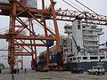 Gdynia BCT 23.jpg