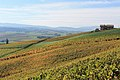 Geneva Countryside in Autumn - panoramio (92).jpg
