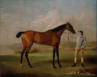 Whistlejacket - Stubbs's Molly Long-legs with her Jockey (1761–62), a more typical racehorse portrait (101 × 127 cm)