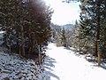 Georgetown, CO 80444, USA - panoramio.jpg