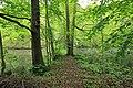 Geschützter Landschaftsbestandteil Schubertgrund in Sachsen. 2H1A1184WI.jpg