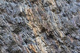Gesteine am Ufer der Urft im Nationalpark Eifel-3534.jpg