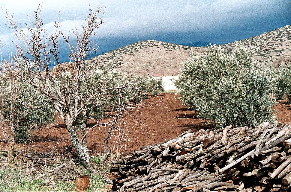Geyre, landscape around of the village