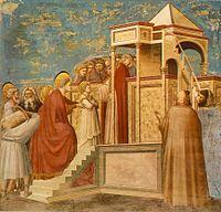 Presentazione della vergine al tempio,Giotto
