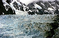 Glacier at south georgia.jpg