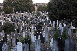 Glasnevin Cemetery - 20th century gravestones.