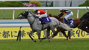 Gold Ship Tenno Sho(Spring) 2015.jpg