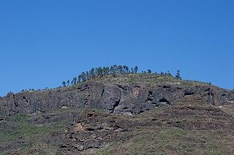 Gran Canaria Barranco de Mogán (MGK17485).jpg