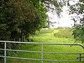 Grassy lane near Thrushbank bridge - geograph.org.uk - 856737.jpg