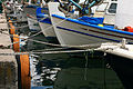 Greek boats E11.jpg