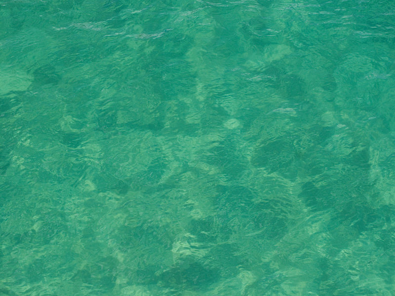 File:Green water, Lake Tahoe.jpg