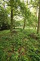 Großsteingrab Pustow 14.JPG