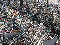 Group of bicycles.JPG