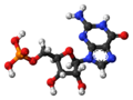 Guanosine-monophosphate-3D-balls.png