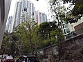 HK ML 香港半山區 Mid-levels 舊山頂道 Old Peak Road near Hornsy Road April 2020 SS2 12.jpg