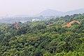 Hangzhou Zhijiang Daxue 20120518-38.jpg