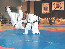 Hapkido tournament in Korea