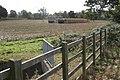 Harvesting a tall grass crop - geograph.org.uk - 1521894.jpg