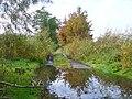 Havelkanal - Uferweg (Havel Canal - Waterside Path) - geo.hlipp.de - 43258.jpg