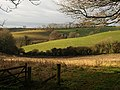 Head of Cockington valley (2) - geograph.org.uk - 1079926.jpg