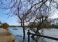 High Tide on the Thames at Strand on the Green (No.2) - panoramio.jpg