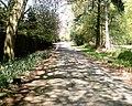 Hogshead Lane, Oakmere - geograph.org.uk - 167330.jpg