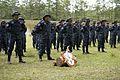 Honduran TIGRES commandos graduate 140619-A-YI554-364.jpg