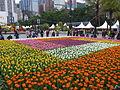 Hong Kong Flower Show 2016 Flower sea 20160314.jpg