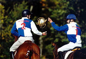 Image illustrative de l'article Horse-ball