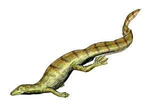 Sauria - Image: Hovasaurus BW
