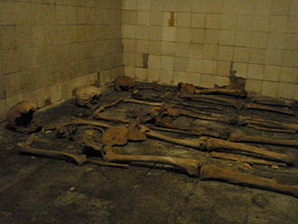 St Eusebius' Church, Arnhem - Some of the bones in the crypt