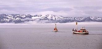 Skjálfandi - Whale watching ships in Skjálfandi