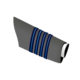 IAF Group Captain sleeve.png