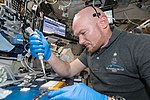 ISS-57 Alexander Gerst works in the Harmony module (1).jpg