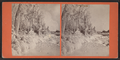 Ice Scene at Point View, by John B. Heywood.png