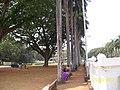 In Front of Basilica of Bom Jesus - panoramio.jpg