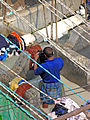 India-7846 - Flickr - archer10 (Dennis).jpg