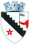 Coat of arms of Roşiorii de Vede