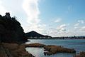 Inuyama castle 犬山城 (2200076130).jpg
