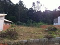 Itupeva - SP - panoramio (2151).jpg