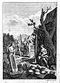 J. Gumilla, Historia natural, 1791; manioc root Wellcome L0021246.jpg