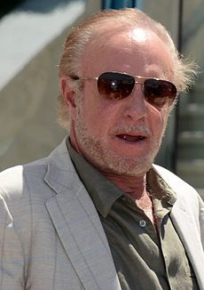 James Caan Cannes 2013.jpg